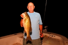 bill_payne_night_spot_july2012